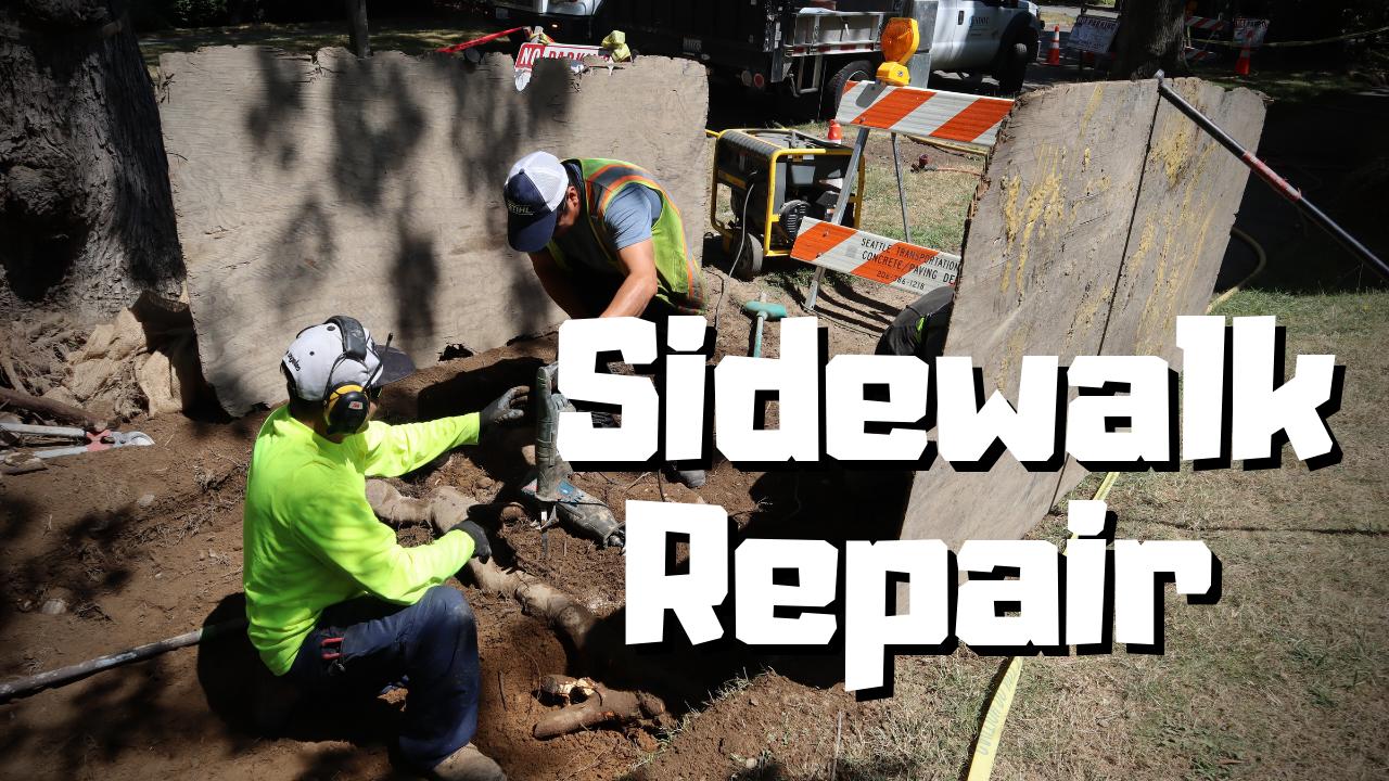 Sidewalk Repair Thumbnail